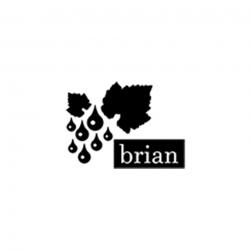 Adalbert Brian