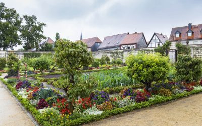 Klostermedizin in Schwaigern – 20. Mai 2019