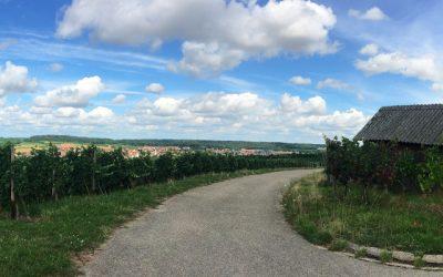 """Vereinsgründung """"Wein am Berg e.V."""""""